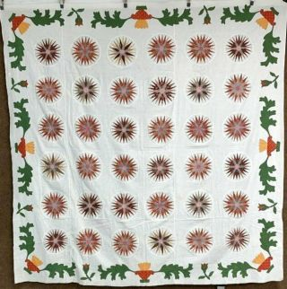 Urns & Tulips Border 1850 - 60s Mariners Compass Quilt Top Antique