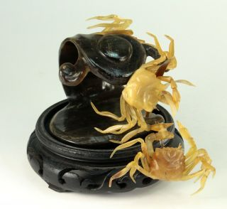 Early Meiji Japanese Water Buffalo Horn Carving Of Crabs On Surf Wave Okimono