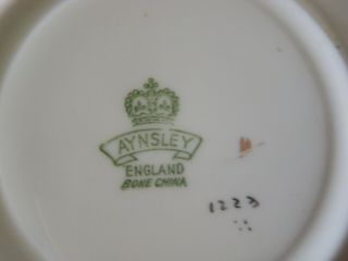 Rare Aynsley Black Oban Footed Cup & Saucer w Cabbage Rose Floral - 5