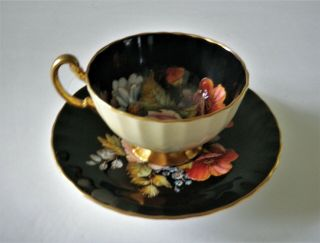 Rare Aynsley Black Oban Footed Cup & Saucer w Cabbage Rose Floral - 6
