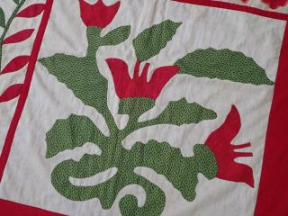 Antique Dated 1847 Signed Baltimore Album QUILT Bird Floral Prussian Stuffed 10