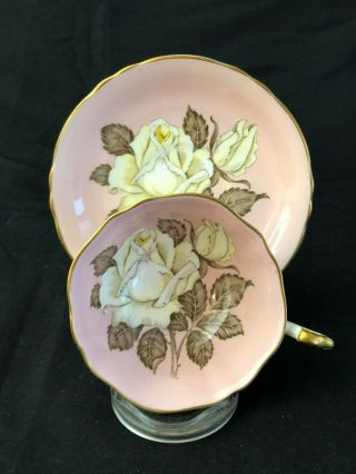 Paragon Large White Rose Pink Floral Center Double Warrant Cup & Saucer No Res.