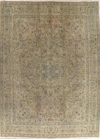 Distressed Traditional Oriental Wool Area Rug Hand - Knotted Muted Carpet 10 X 13
