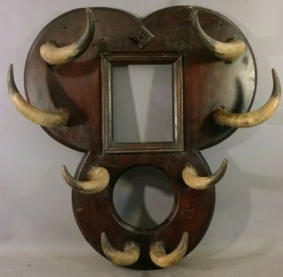 19thc Antique Old West Cow Town Saloon Size Cattle Horn Western Brothel Hat Rack