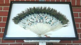 Antique 19th Century Hand Fan W/ Carved Bone And Painted Feathers,  Framed