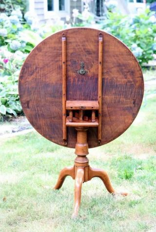 18th Century Antique Tilt Top Table Tiger Maple W/bird Cage
