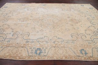 Antique Geometric Muted Beige Blue Persian Oriental Distressed Area Rug 8x11