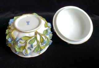 Exceptional Meissen Tea Set,  Insects Leaves,  Flowers,  Crossed Swords 11