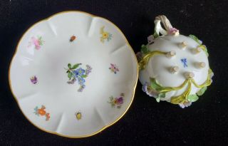 Exceptional Meissen Tea Set,  Insects Leaves,  Flowers,  Crossed Swords 6