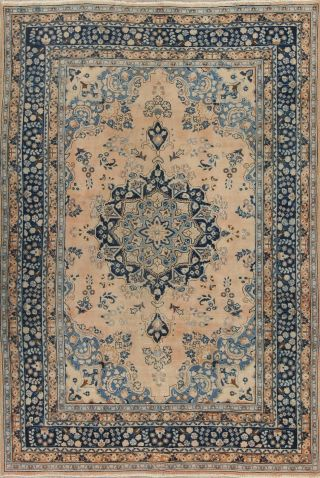 Antique Muted Peach & Blue Traditional Persian Area Rug Distressed Carpet 6x9