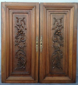 Big Antique French Furniture Doors Early 1900