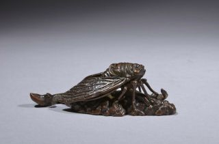 Antique Chinese Bronze Scroll Weight – Cicada,  Qing Dynasty.