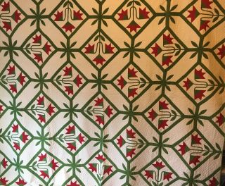 1880 - 1900 Outstanding Carolina Lily Quilt