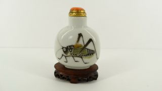 Rare Antique Imperial Chinese Porcelain Snuff Bottle 19th Qing Katydid Cricket