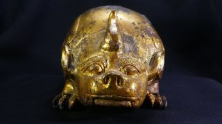 2,  000 Year - Old Chinese Gilt - Bronze Pig Dragon Floor Mat Weight Year of the Pig 11