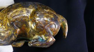 2,  000 Year - Old Chinese Gilt - Bronze Pig Dragon Floor Mat Weight Year of the Pig 12
