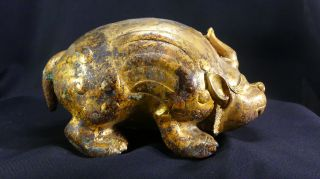 2,  000 Year - Old Chinese Gilt - Bronze Pig Dragon Floor Mat Weight Year of the Pig 2