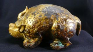 2,  000 Year - Old Chinese Gilt - Bronze Pig Dragon Floor Mat Weight Year of the Pig 5