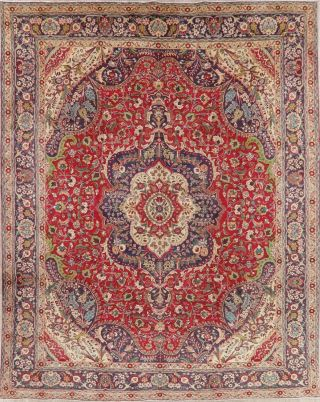 Red Vintage Persian Area Rug Hand - Knotted Medallion Oriental Wool Carpet 10x13