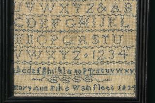 ANTIQUE NEEDLEWORK SAMPLER by MARY ANN PIKE WAINFLEET LINCOLNSHIRE 1834 2