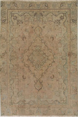 Antique Muted Peach Coral Persian Area Rug Distressed Oriental Faded Rug 8x11
