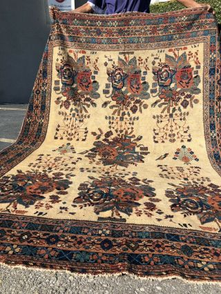 Auth: 19th C Antique Tribal Persian Rug Organic Afshari 6x7 Ivory Wool Beauty Nr