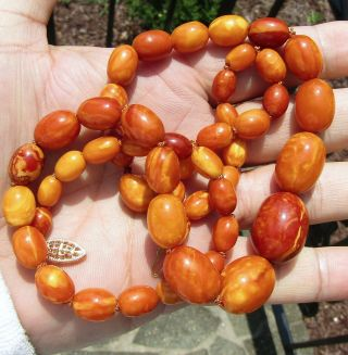 100 Natural Baltic Amber Bead Necklace,  Butterscotch,  Egg Yolk,  Chinese