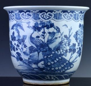 Fine Antique 19thc Chinese Blue White Bird Landscape Planter Jardiniere Vase