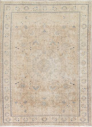Antique Muted Beige Brown Persian Oriental Area Rug Distressed Faded Wool 8x11