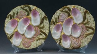 Pr 19c German Porcelain Oyster Plates W/ Seaweed Pink & Gold Collamore & Co 1/3