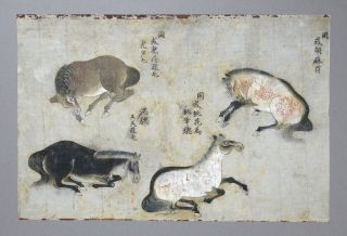 Fine Antique Chinese 19th Century Scroll Painting - 4 Horses