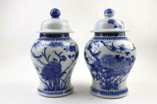 Pair Antique Chinese Blue & White Vases W/ Birds,  Lids,  19th/early 20 C