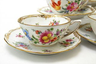 12 Pc Dresden Hand Painted Floral Wide Tea Cups & Saucers