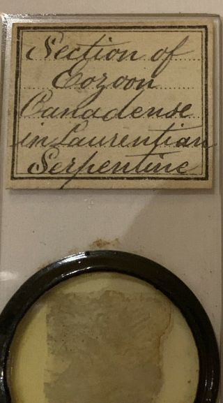 Antique Victorian Microscope Slide Geology Rock Mineral Thin Section Serpentine