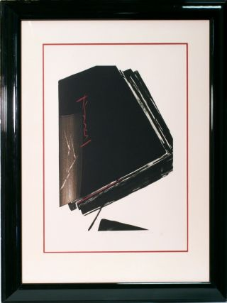 Illusion By Toko Shinoda / Large Size / / Framed / Small Edition