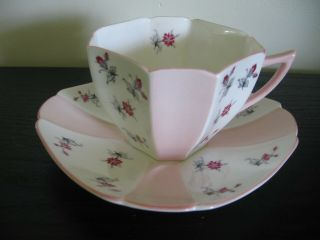 Shelley Pink Charm Queen Ann Tea Cup And Saucer