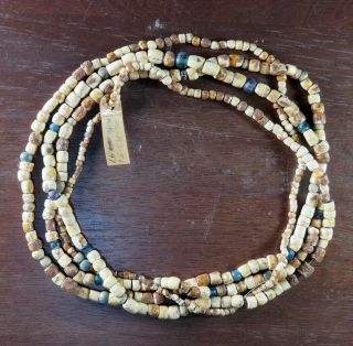 Museum - Grade 76 In.  Strand Fort Ancient Shell/glass Beads,  W.  Va X Beutell
