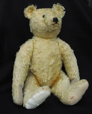 Rare Early Antique Steiff Teddy Bear 1915