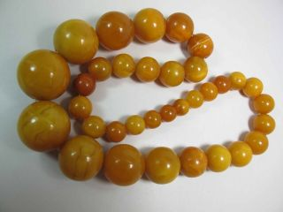 Antique Round Egg Yolk Baltic Amber Necklace W/ 30 - Mm Center Bead 137.  5 Grams