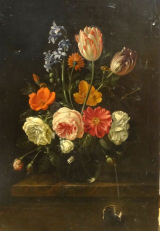 Fine 17th 18th Century Dutch Old Master Still Life Flowers Antique Oil Painting