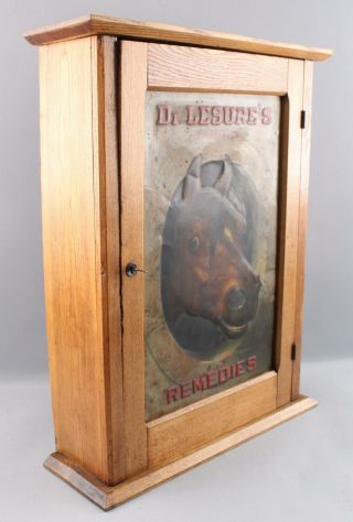 Antique DR.  LESURES REMEDIES Veterinary Medicine Country Store Cabinet Sign Book 6