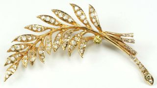 Stunning Large 14k Yellow Gold Feather Brooch Pin With 1800s Rose Cut Diamonds
