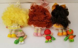 Vtg Strawberry Shortcake Dolls & Berrykins Tulip Strawberry and Orange 2