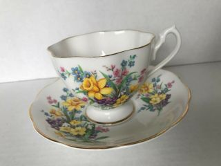 Pretty Spring Daffodils Queen Anne Tea Cup And Saucer Set Cond.