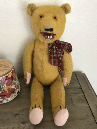 Antique 1907 Roosevelt Bear With Teeth Stuffed Teddy Bear Rare