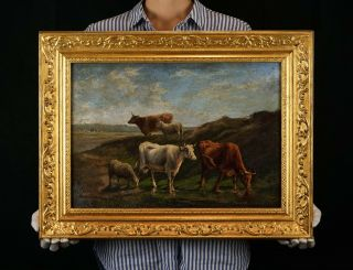 Fine 19th Century Antique Oil On Panel Painting | Cattle & Sheep In A Landscape