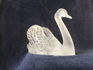 lalique crystal swan (head up) ; signed vintage, 10