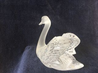 lalique crystal swan (head up) ; signed vintage, 4
