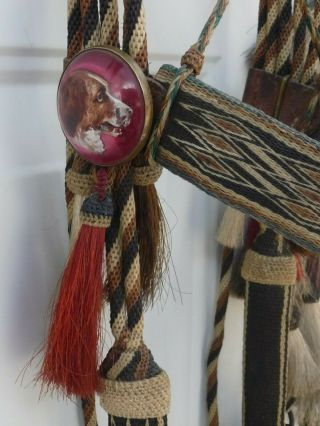 Very Rare Deerlodge Prison Montana Hitched Horse Hair Bridle C - 1880 - 1920 4