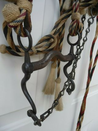 Very Rare Deerlodge Prison Montana Hitched Horse Hair Bridle C - 1880 - 1920 6